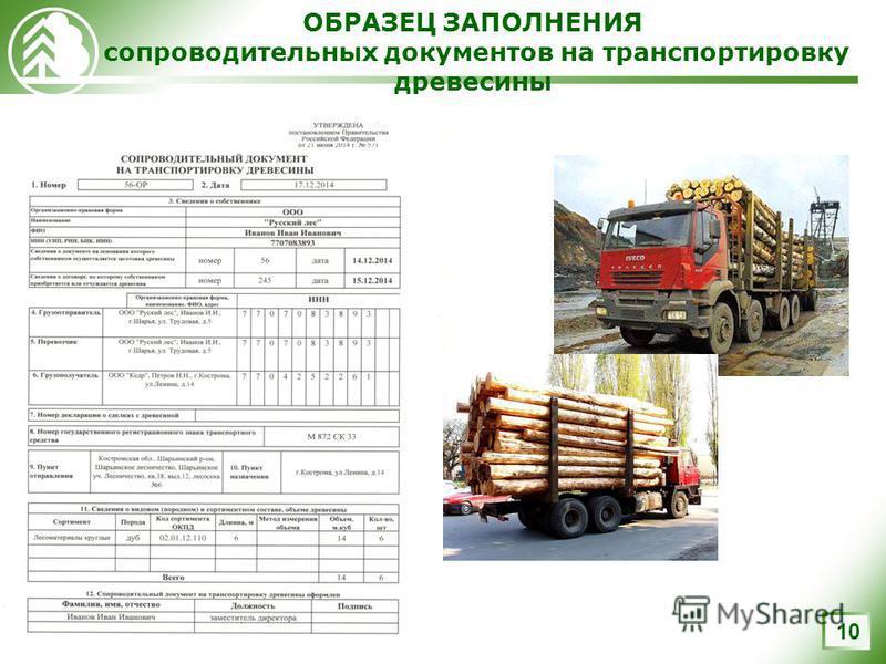ОБРАЗЕЦ ЗАПОЛНЕНИЯ сопроводительных документов на транспортировку древесины 10