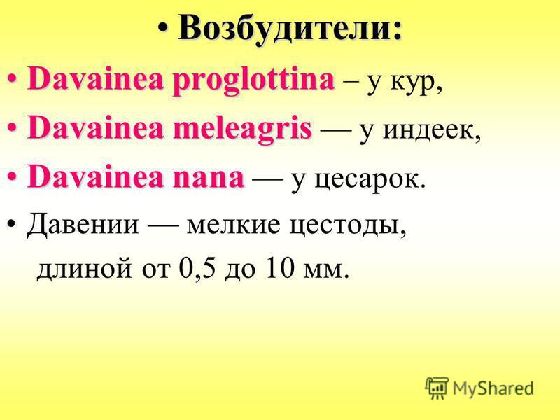 Возбудители:Возбудители: Davainea proglottinaDavainea proglottina – у кур, Davainea meleagrisDavainea meleagris у индеек, Davainea nаnаDavainea nаnа у цесарок. Давении мелкие цестоды, длиной от 0,5 до 10 мм.