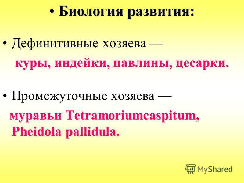 Биология развития:Биология развития: Дефинитивные хозяева куры, индейки, павлины, цесарки. Промежуточные хозяева муравьи Tetramoriumcaspitum, Pheidola pallidula. муравьи Tetramoriumcaspitum, Pheidola pallidula.
