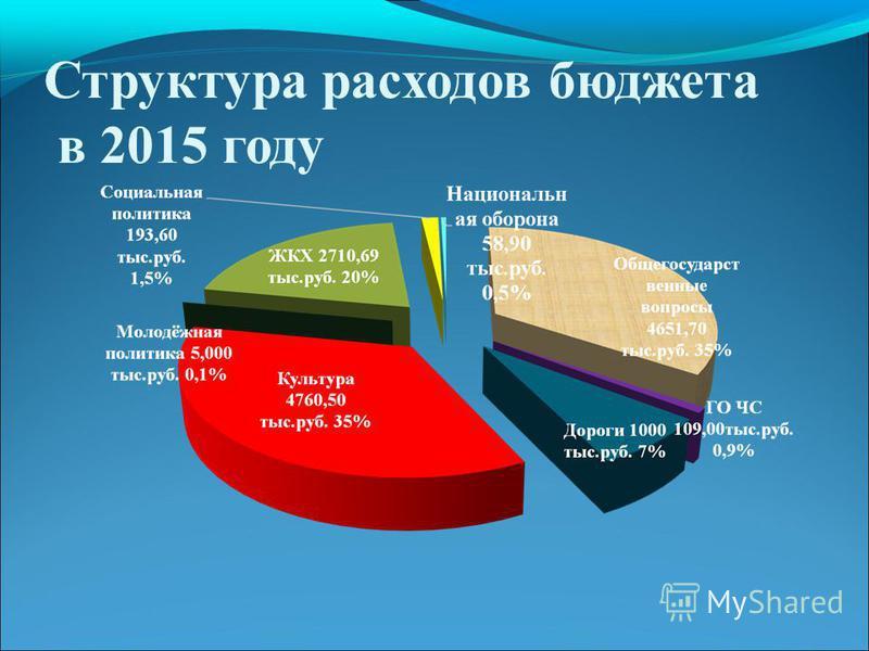 Структура расходов бюджета в 2015 году