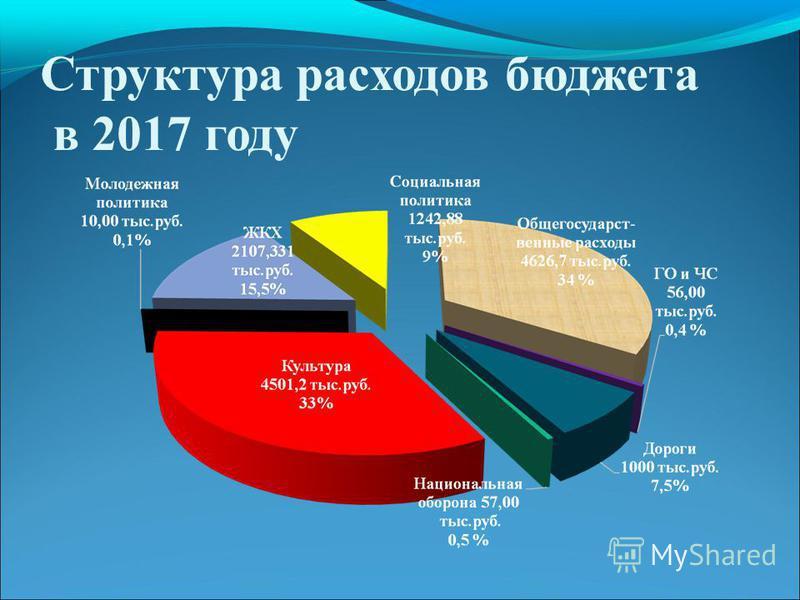 Структура расходов бюджета в 2017 году