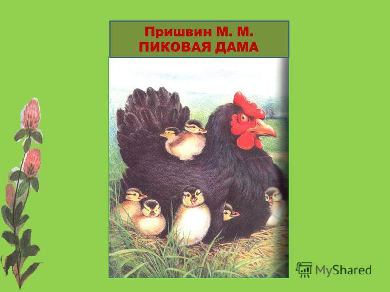 Пришвин М. М. ПИКОВАЯ ДАМА