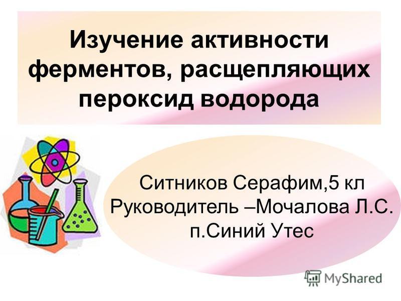 Изучение активности ферментов, расщепляющих пероксид водорода Ситников Серафим,5 кл Руководитель –Мочалова Л.С. п.Синий Утес