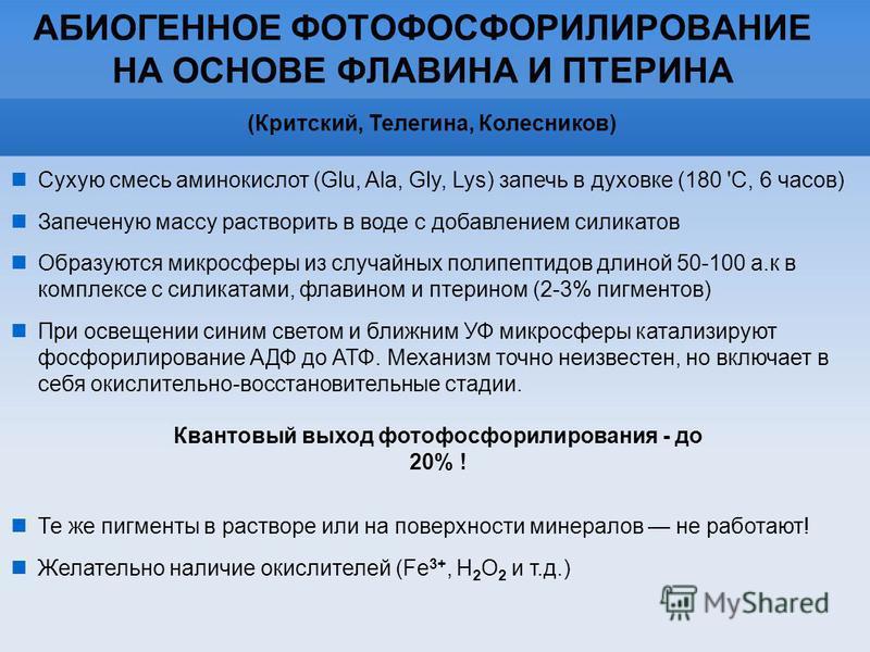 АБИОГЕННОЕ ФОТОФОСФОРИЛИРОВАНИЕ НА ОСНОВЕ ФЛАВИНА И ПТЕРИНА (Критский, Телегина, Колесников) Квантовый выход фотофосфорилирования - до 20% ! Сухую смесь аминокислот (Glu, Ala, Gly, Lys) запечь в духовке (180 'C, 6 часов) Запеченую массу растворить в
