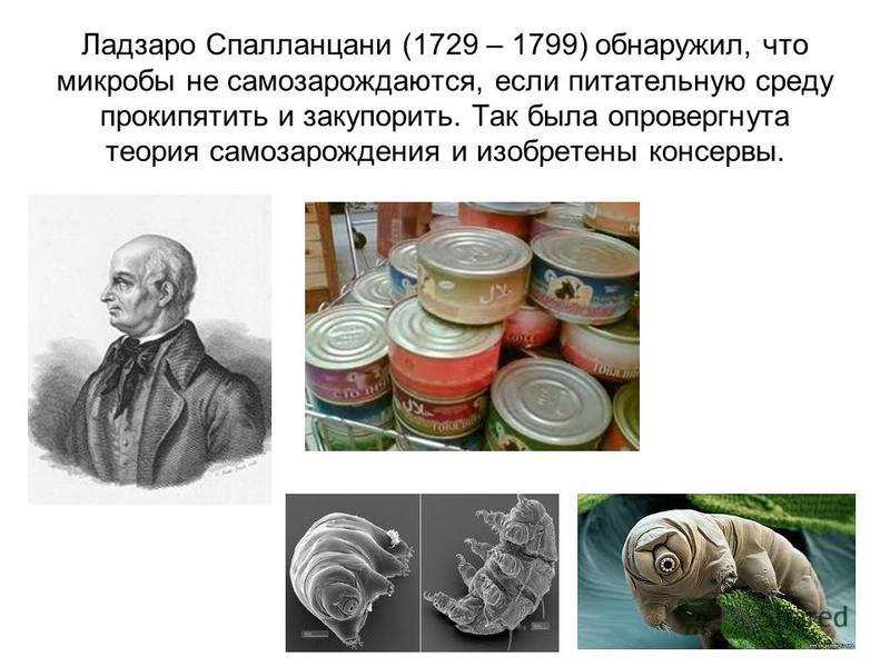 Ладзаро Спалланцани (1729 – 1799) обнаружил, что микробы не самозарождаются, если питательную среду прокипятить и закупорить. Так была опровергнута теория самозарождения и изобретены консервы.