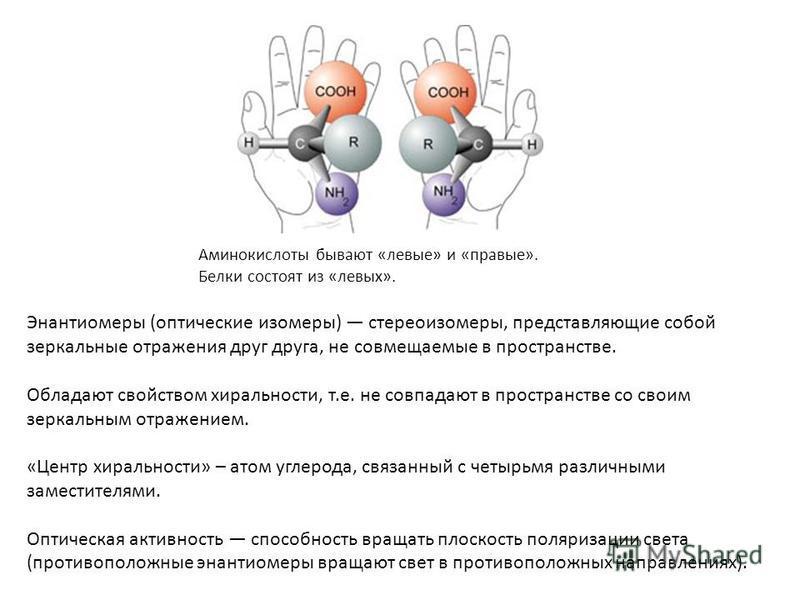 Аминокислоты бывают «левые» и «правые». Белки состоят из «левых». Энантиомеры (оптические изомеры) стереоизомеры, представляющие собой зеркальные отражения друг друга, не совмещаемые в пространстве. Обладают свойством хиральности, т.е. не совпадают в