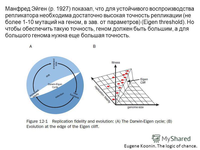 Манфред Эйген (р. 1927) показал, что для устойчивого воспроизводства репликатора необходима достаточно высокая точность репликации (не более 1-10 мутаций на геном, в зав. от параметров) (Eigen threshold). Но чтобы обеспечить такую точность, геном дол
