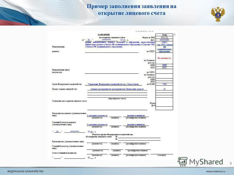сведения об организации казначейство образец