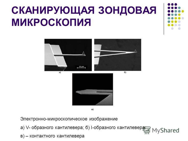 СКАНИРУЮЩАЯ ЗОНДОВАЯ МИКРОСКОПИЯ Электронно-микроскопическое изображение а) V- образного кантилевера; б) I-образного кантилевера; в) – контактного кантилевера