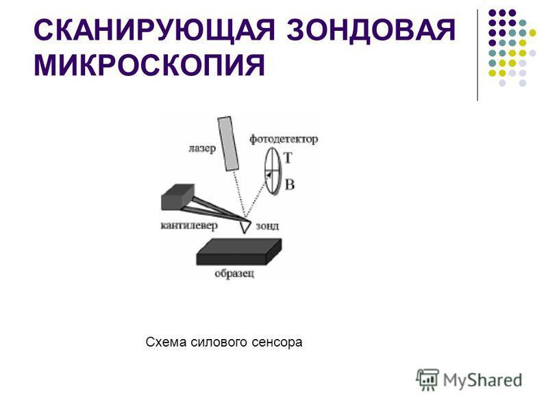 СКАНИРУЮЩАЯ ЗОНДОВАЯ МИКРОСКОПИЯ Схема силового сенсора