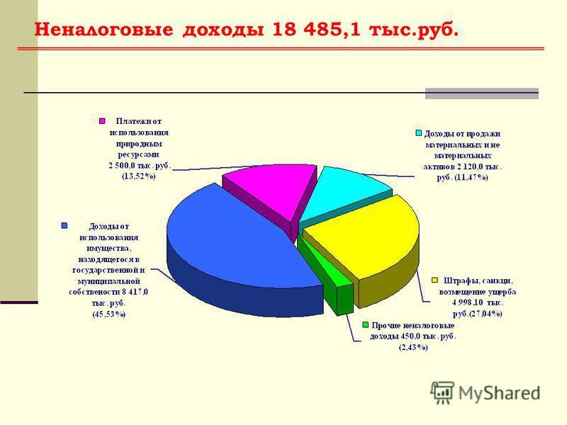 Неналоговые доходы 18 485,1 тыс.руб.