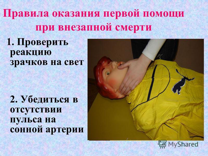 Правила оказания первой помощи при внезапной смерти 1. Проверить реакцию зрачков на свет 2. Убедиться в отсутствии пульса на сонной артерии