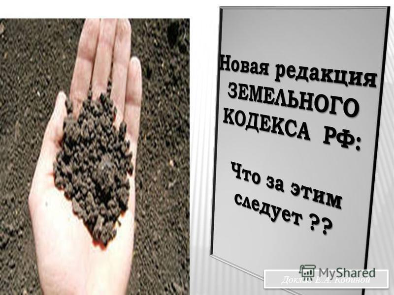Доклад Е.А. Кодиной