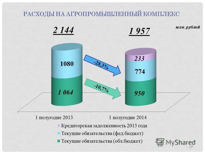 РАСХОДЫ НА АГРОПРОМЫШЛЕННЫЙ КОМПЛЕКС млн. рублей 17