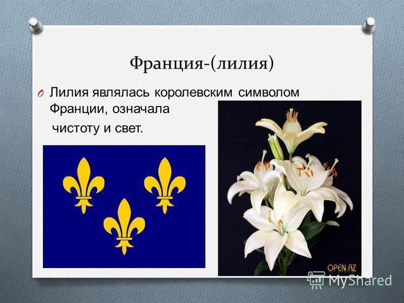 Франция-(лилия) O Лилия являлась королевским символом Франции, означала чистоту и свет.