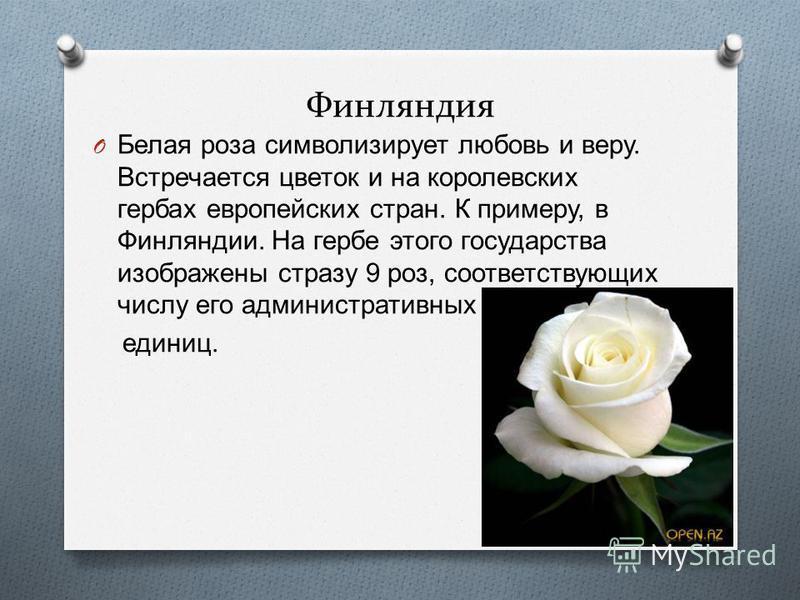 Финляндия O Белая роза символизирует любовь и веру. Встречается цветок и на королевских гербах европейских стран. К примеру, в Финляндии. На гербе этого государства изображены стразу 9 роз, соответствующих числу его административных единиц.