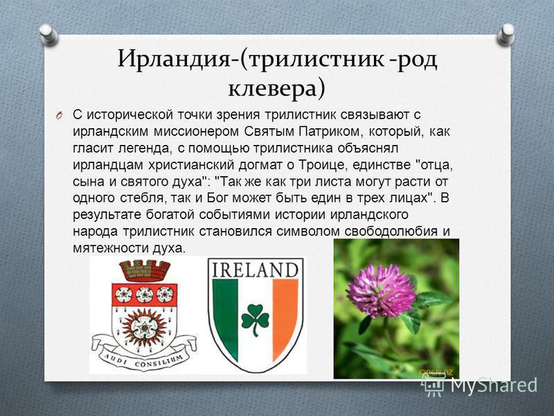 Ирландия-(трилистник -род клевера) O С исторической точки зрения трилистник связывают с ирландским миссионером Святым Патриком, который, как гласит легенда, с помощью трилистника объяснял ирландцам христианский догмат о Троице, единстве