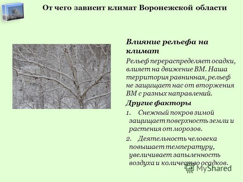 От чего зависит климат Воронежской области Влияние рельефа на климат Рельеф перераспределяет осадки, влияет на движение ВМ. Наша территория равнинная, рельеф не защищает нас от вторжения ВМ с разных направлений. Другие факторы 1. Снежный покров зимой