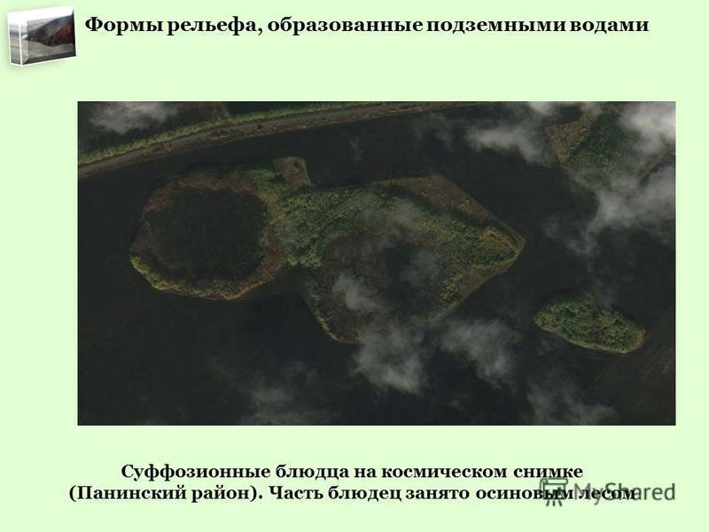 Суффозионные блюдца на космическом снимке (Панинский район). Часть блюдец занято осиновым лесом Формы рельефа, образованные подземными водами
