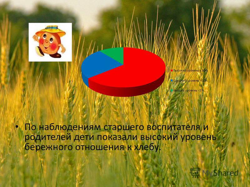 По наблюдениям старшего воспитателя и родителей дети показали высокий уровень бережного отношения к хлебу.