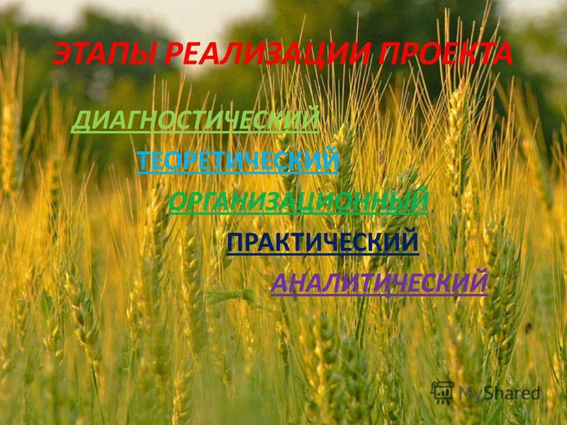 ЭТАПЫ РЕАЛИЗАЦИИ ПРОЕКТА ДИАГНОСТИЧЕСКИЙ ТЕОРЕТИЧЕСКИЙ ОРГАНИЗАЦИОННЫЙ ПРАКТИЧЕСКИЙ АНАЛИТИЧЕСКИЙ