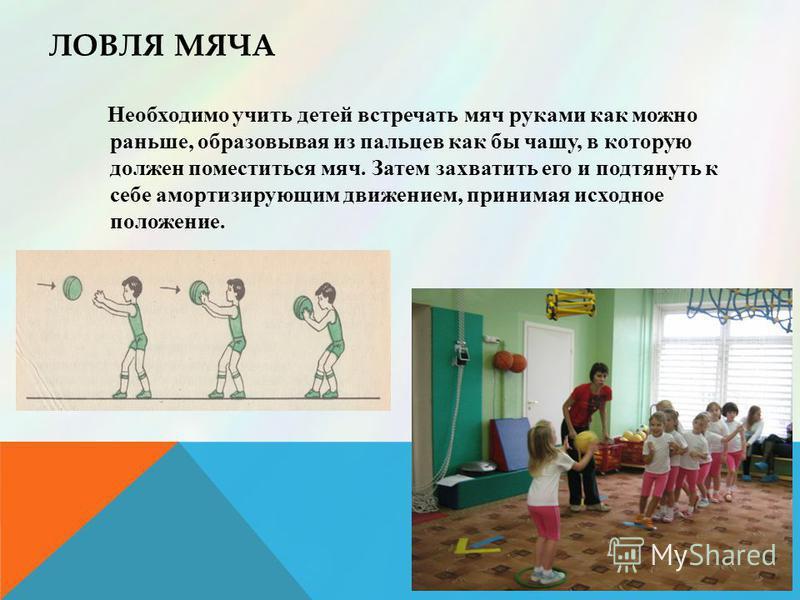 ЛОВЛЯ МЯЧА Необходимо учить детей встречать мяч руками как можно раньше, образовывая из пальцев как бы чашу, в которую должен поместиться мяч. Затем захватить его и подтянуть к себе амортизирующим движением, принимая исходное положение.