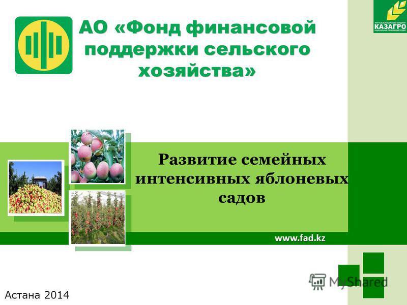 www.fad.kz Развитие семейных интенсивных яблоневых садов АО «Фонд финансовой поддержки сельского хозяйства» Астана 2014