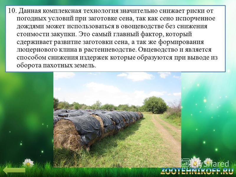 10. Данная комплексная технология значительно снижает риски от погодных условий при заготовке сена, так как сено испорченное дождями может использоваться в овощеводстве без снижения стоимости закупки. Это самый главный фактор, который сдерживает разв