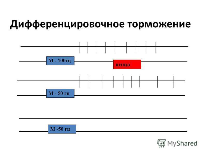 Дифференцировочное торможение М - 100 гц пища М - 50 гц