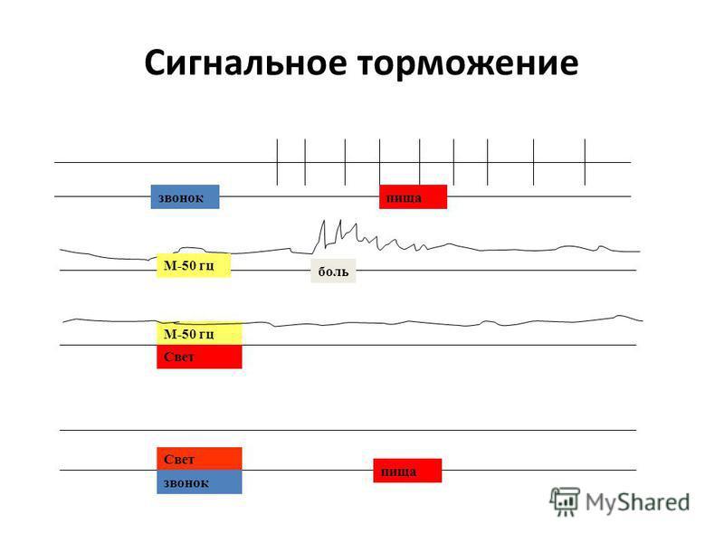 Сигнальное торможение звонокпища М-50 гц боль М-50 гц Свет звонок пища
