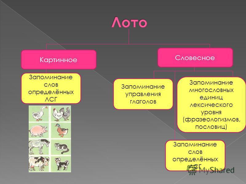 Картинное Словесное Запоминание слов определённых ЛСГ Запоминание управления глаголов Запоминание многословных единиц лексического уровня (фразеологизмов, пословиц) Запоминание слов определённых ЛСГ