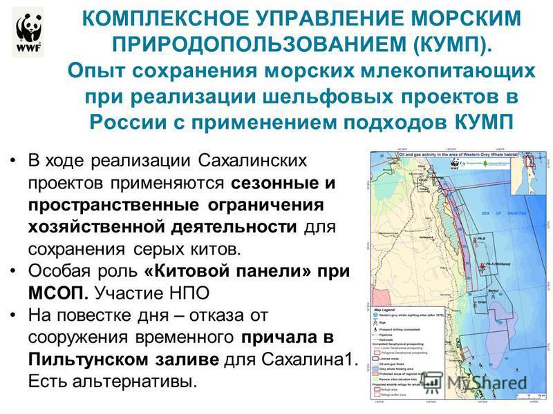 КОМПЛЕКСНОЕ УПРАВЛЕНИЕ МОРСКИМ ПРИРОДОПОЛЬЗОВАНИЕМ (КУМП). Опыт сохранения морских млекопитающих при реализации шельфовых проектов в России с применением подходов КУМП В ходе реализации Сахалинских проектов применяются сезонные и пространственные огр
