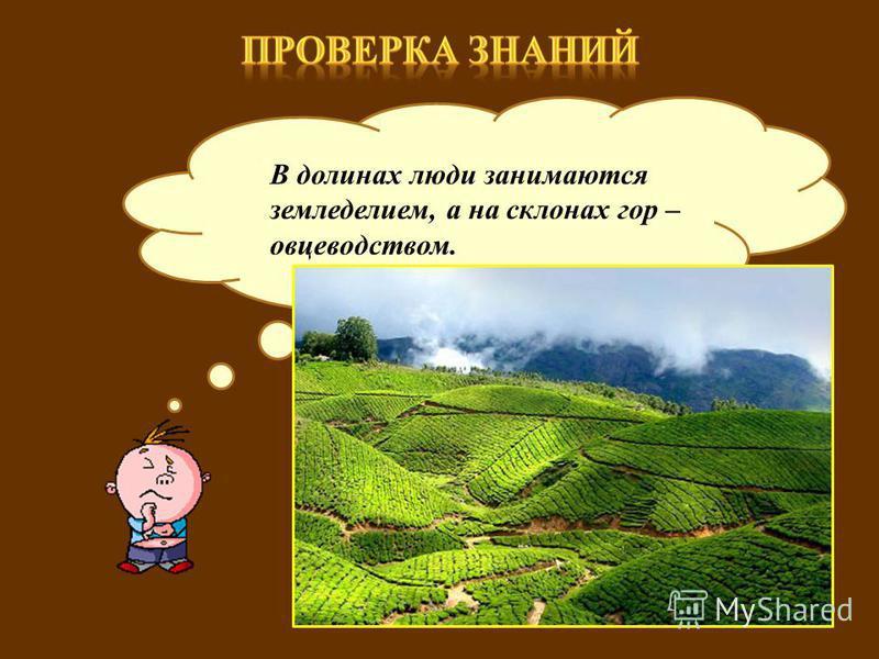 Какими видами деятельности занимаются люди, живущие в горах? В долинах люди занимаются земледелием, а на склонах гор – овцеводством.