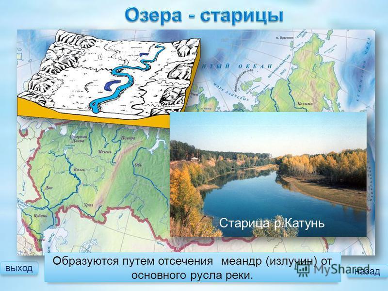 выход Образуются путем отсечения меандр (излучин) от основного русла реки. Старица р.Катунь назад