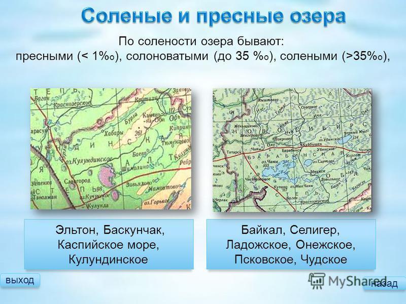 выход назад Байкал, Селигер, Ладожское, Онежское, Псковское, Чудское Эльтон, Баскунчак, Каспийское море, Кулундинское По солености озера бывают: пресными ( 35% о ),