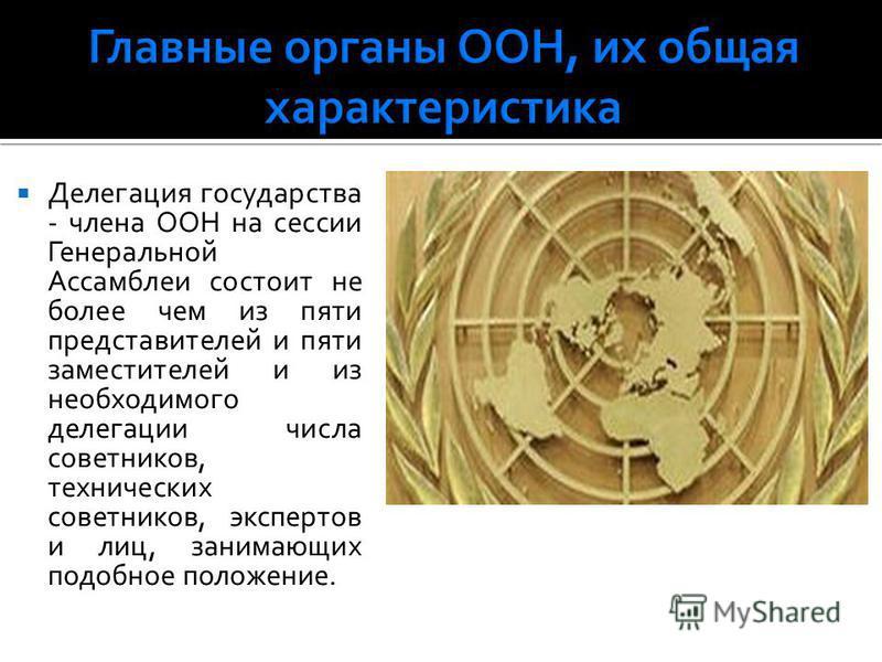 Делегация государства - члена ООН на сессии Генеральной Ассамблеи состоит не более чем из пяти представителей и пяти заместителей и из необходимого делегации числа советников, технических советников, экспертов и лиц, занимающих подобное положение.