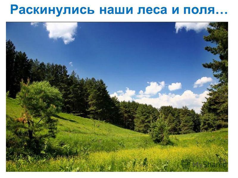 Раскинулись наши леса и поля…