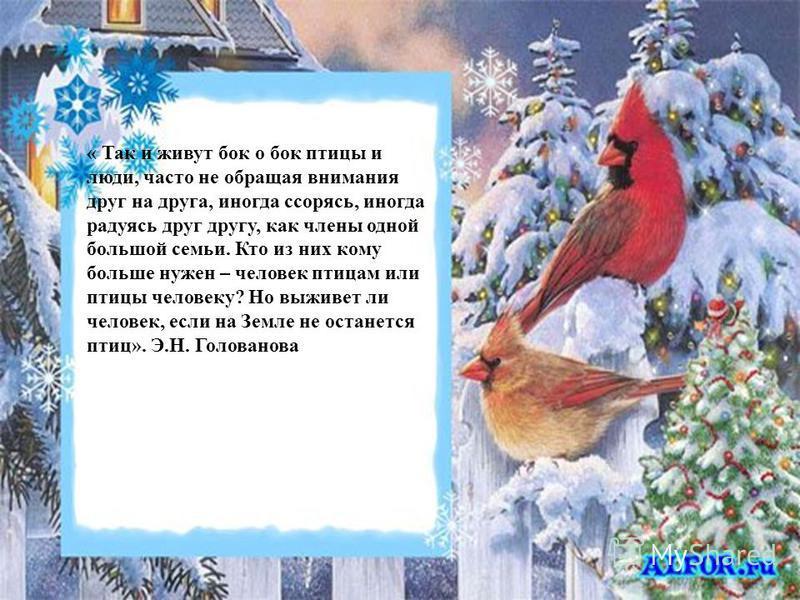 « Так и живут бок о бок птицы и люди, часто не обращая внимания друг на друга, иногда ссорясь, иногда радуясь друг другу, как члены одной большой семьи. Кто из них кому больше нужен – человек птицам или птицы человеку? Но выживет ли человек, если на