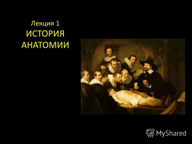 Лекция 1 ИСТОРИЯ АНАТОМИИ