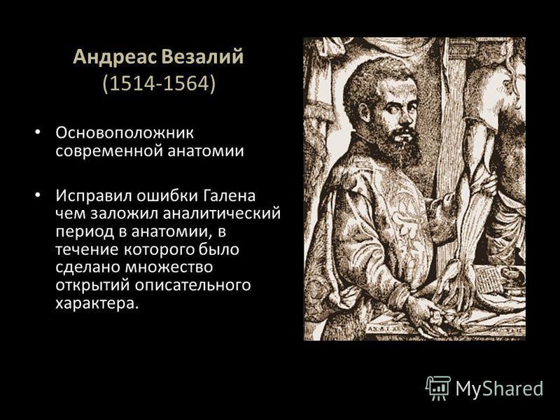 Андреас Везалий (1514-1564) Основоположник современной анатомии Исправил ошибки Галена чем заложил аналитический период в анатомии, в течение которого было сделано множество открытий описательного характера.