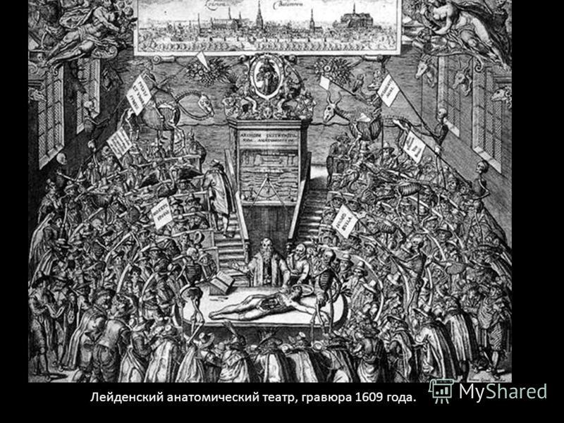 Лейденский анатомический театр, гравюра 1609 года.