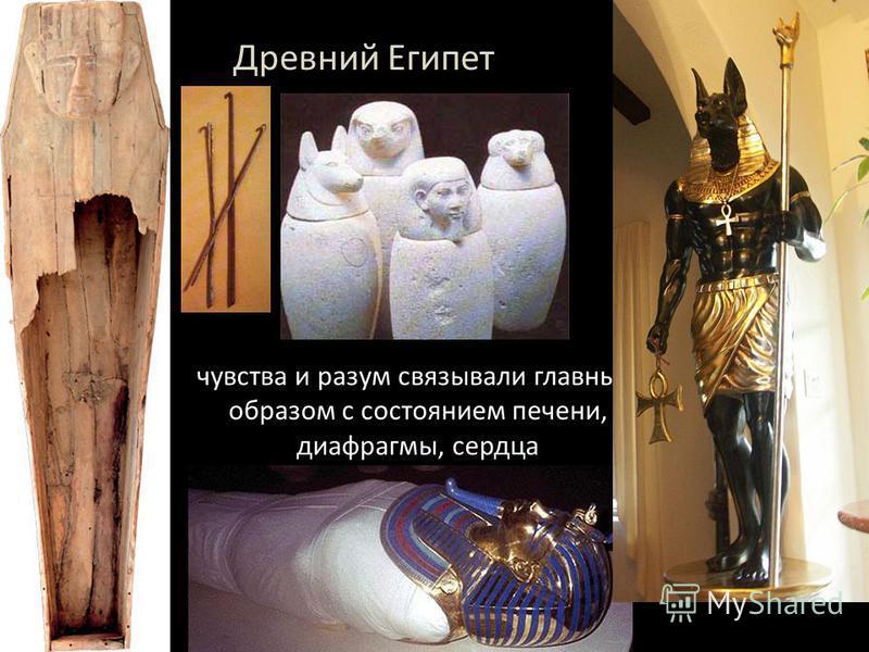 чувства и разум связывали главным образом с состоянием печени, диафрагмы, сердца Древний Египет