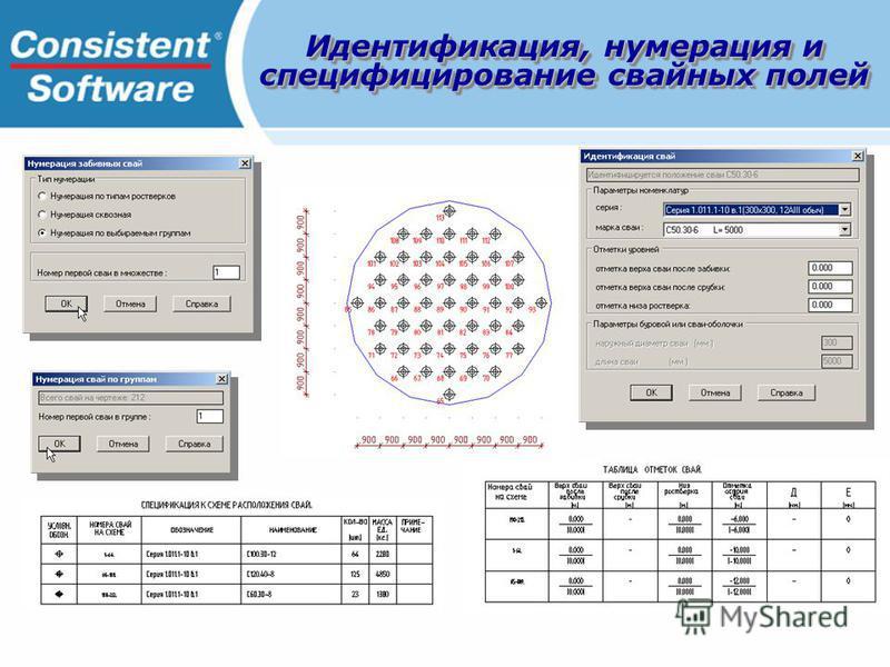 Идентификация, нумерация и специфицирование свайных полей