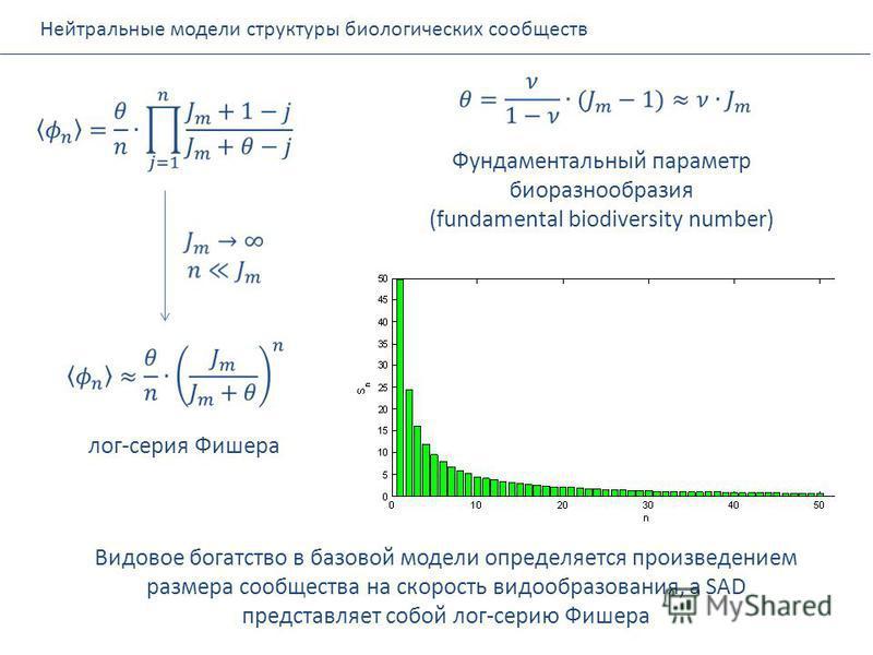 Нейтральные модели структуры биологических сообществ Фундаментальный параметр биоразнообразия (fundamental biodiversity number) лог-серия Фишера Видовое богатство в базовой модели определяется произведением размера сообщества на скорость видообразова