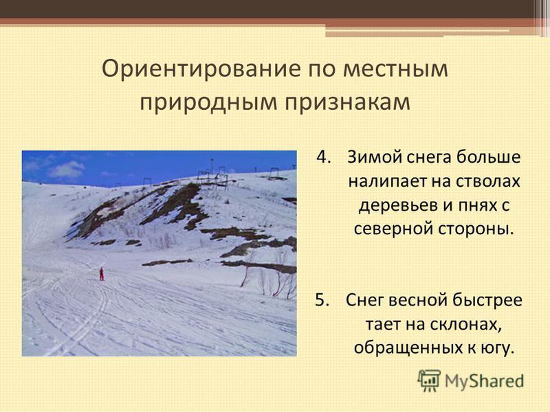 Ориентирование по местным природным признакам 4. Зимой снега больше налипает на стволах деревьев и пнях с северной стороны. 5. Снег весной быстрее тает на склонах, обращенных к югу.