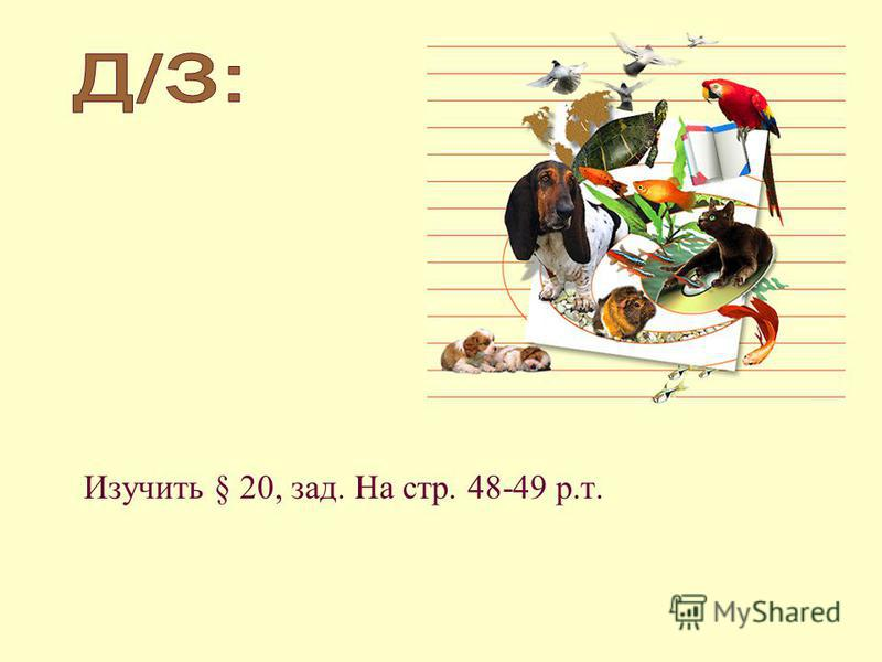 Изучить § 20, зад. На стр. 48-49 р.т.