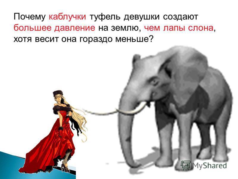 Почему каблучки туфель девушки создают большее давление на землю, чем лапы слона, хотя весит она гораздо меньше?
