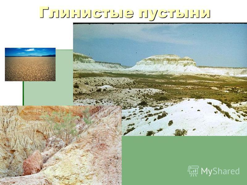 Глинистые пустыни