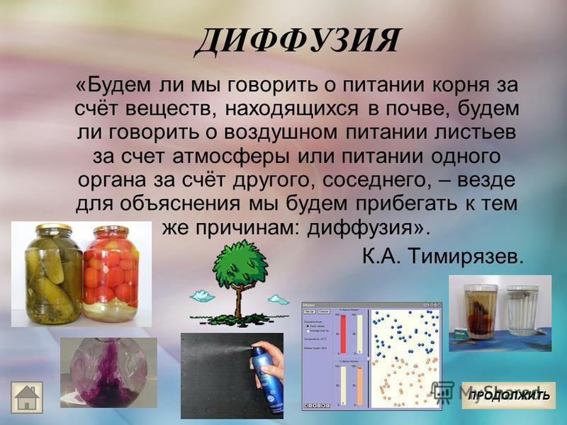 ДИФФУЗИЯ «Будем ли мы говорить о питании корня за счёт веществ, находящихся в почве, будем ли говорить о воздушном питании листьев за счет атмосферы или питании одного органа за счёт другого, соседнего, – везде для объяснения мы будем прибегать к тем