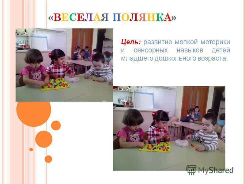 «ВЕСЕЛАЯ ПОЛЯНКА» Цель: развитие мелкой моторики и сенсорных навыков детей младшего дошкольного возраста.